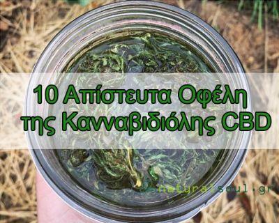 10 Οφέλη της Κανναβιδιόλης CBD για το Πόνο και το Άγχος που θα σας Καταπλήξουν!