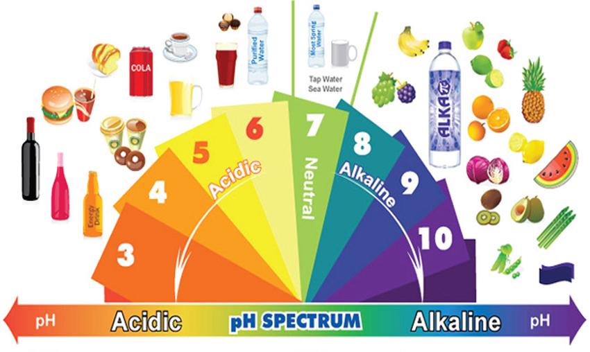 Αλκαλική διατροφή: Μήπως είναι το Κλειδί για Μακροζωΐα και Καταπολέμηση Χρόνιων Ασθενειών;