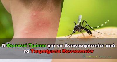 Ανακουφιστείτε από τα Τσιμπήματα των Κουνουπιών με αυτούς τους 5 Φυσικούς Τρόπους!