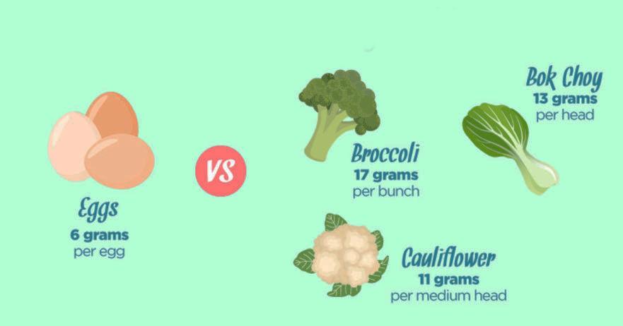 10 Λαχανικά γεμάτα πρωτεΐνες που πρέπει να προσθέσουμε στη διατροφή μας, ξεκινώντας από…σήμερα!