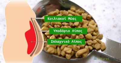 7 Βότανα που μας Βοηθούν στην Απώλεια Βάρους Σύμφωνα με τους Επιστήμονες!
