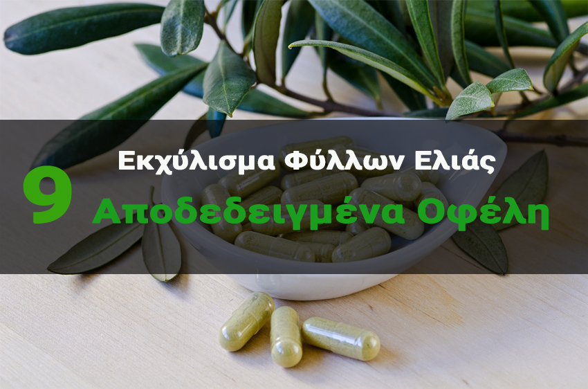 Eκχύλισμα Φύλλων Ελιάς! Οφέλη για την Υγεία του Καρδιαγγειακού Συστήματος και την Εγκεφαλική Λειτουργία!