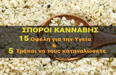 Σπόροι Κάνναβης: 15 Εκπληκτικά Οφέλη & 5 Τρόποι να τους Καταναλώσετε