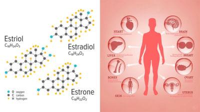 Οιστρογόνα! Δείτε πώς μπορείτε να ρυθμίσετε τα οιστρογόνα σας με φυσικό τρόπο!