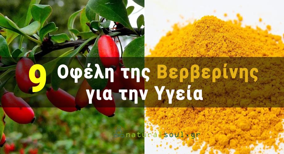 Βερβερίνη: Το Φυτικό Αλκαλοειδές που Βοηθά στην Αντιμετώπιση του Διαβήτη και των Πεπτικών Προβλημάτων