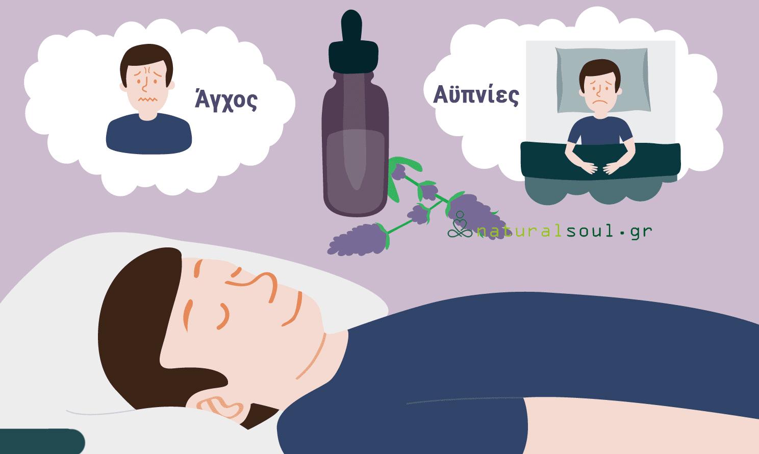 Αιθέριο Έλαιο Λεβάντας: 10 Οφέλη του για Μικρά και Μεγάλα Προβλήματα Υγείας!